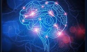 5 พฤติกรรมทำไอคิว(IQ) ต่ำ