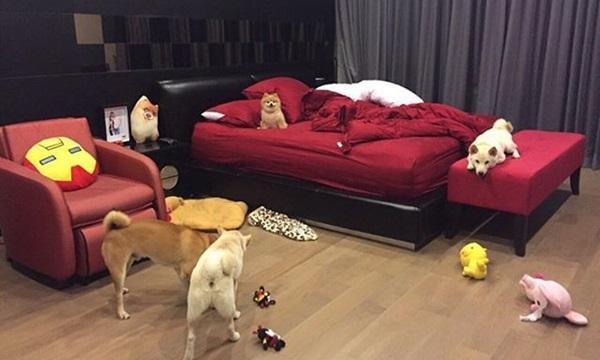 นี่คือสภาพห้องนอนของพระเอกจริงๆ นะ
