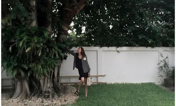 เชอร์รี่ เข็มอัปสร นี่ต้นไม้ที่บ้านใหญ่ขนาดนี้เลยหรอ?