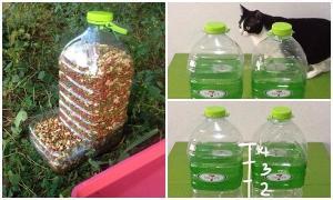 DIY ที่ให้อาหารแมวและสุนัขแบบทำเอง
