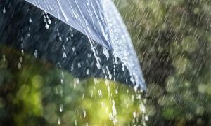ฝนไม่ได้ดีแค่เรื่องเกษตรกับ 6 แนวทางนำน้ำฝนมาใช้ให้เกิดประโยชน์