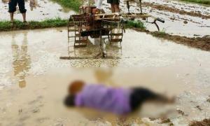 ภาพเศร้า พบศพลุงวัย 57 นอนจมโคลน เสียชีวิตขณะไถนา