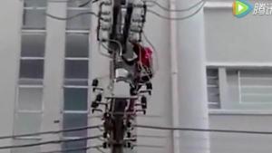 หนุ่มปีนขึ้นเสาไฟฟ้าประท้วง ถูกช็อตดับคาที่