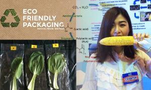 เด็กธรรมศาสตร์เจ๋ง ช่วย SMEs วิจัยถุงพลาสติกยืดอายุผักและเป็นมิตรกับสิ่งแวดล้อม