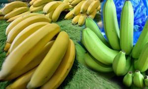กล้วยลดความดันกันหลอดเลือดแตก
