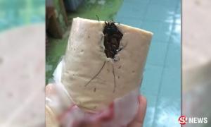 ข้าวแทบพุ่ง! สาวเจอสิ่งคล้ายแมลงสาบในแท่งหมูยอ