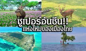 กลางทะเลมีกวาง!!! พาชมอันซีนไทยแลนด์ ซาฟารีกลางทะเลอ่าวไทย