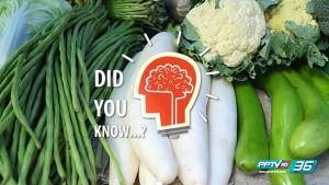 ผัดผัก เป็นวิธีที่ดีที่สุดหรือเปล่า มีผลเสียต่อสุขภาพหรือไม่ - Did you Know