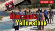 บทเรียนราคาแพง เปิดเหตุผลทำไมลง Yellowstone From Thailand