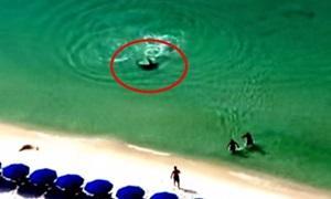 คลิประทึก นักท่องเที่ยววิ่งหนีฉลามขึ้นฝั่ง