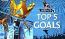 Premier league 2014-15 week 8 Top 5 Goals