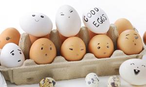 """เรื่อง """"ไข่"""" ที่คุณอาจไม่รู้"""